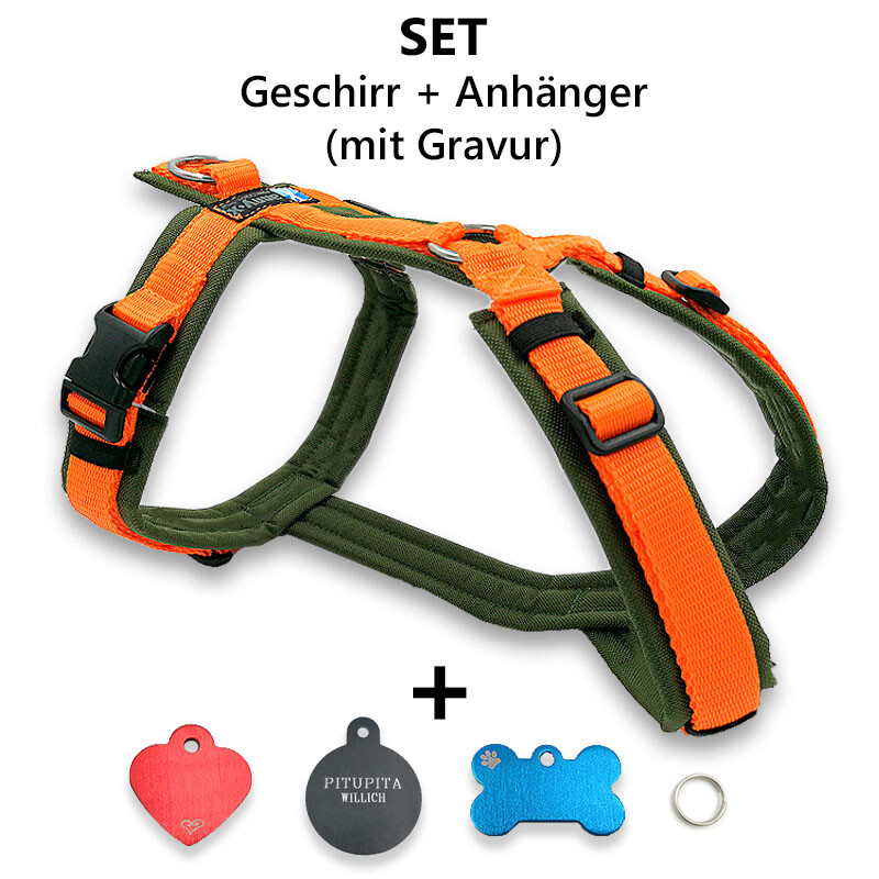 AnnyX Brustgeschirr Fun oliv orange + Anhänger inkl. Garvur XXS 3K