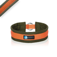 AnnyX Zugstopp Halsband FUN oliv orange 2