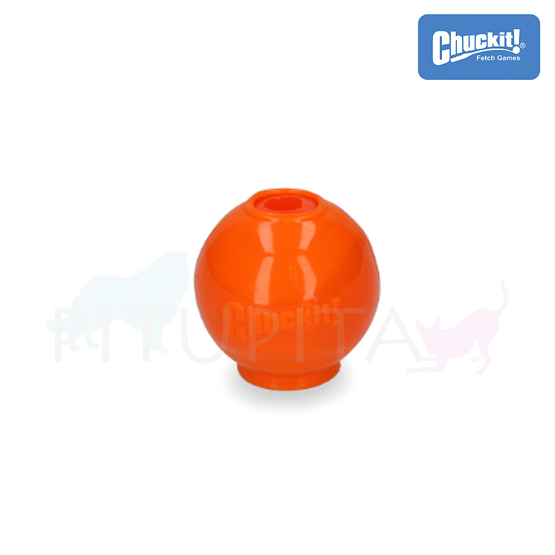 Chuckit HydroFreeze Ball