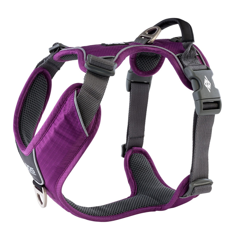 DOG Copenhagen Comfort Walk PRO V2 Geschirr lila violett Purple Passion L