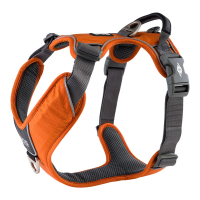 DOG Copenhagen Comfort Walk PRO V2 Geschirr orange sun